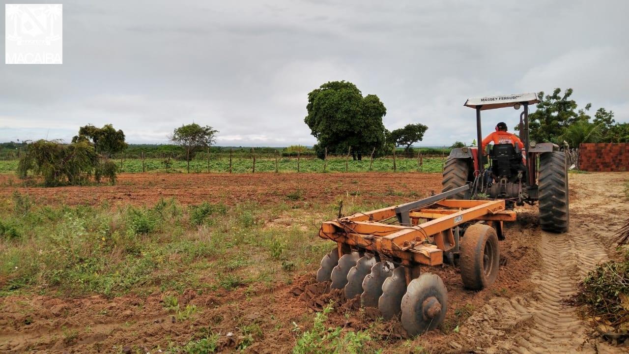 Corte de Terra 2020: Mais de 2200 horas já foram concluídas em Macaíba |  Prefeitura de Macaíba